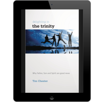 Delighting in the Trinity (ebook)